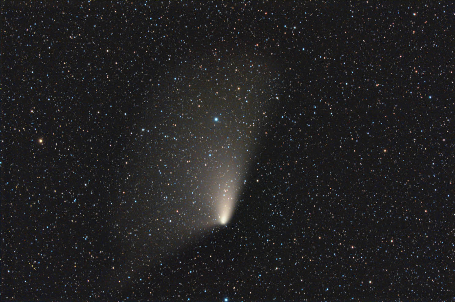 PanStarrs comet photographed in April 15 by Rolando Ligustri from Latisana: 198 KB; click on the image to enlarge at 1488x986 pixels